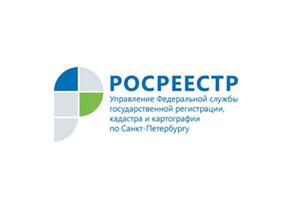 Земельный надзор в Петербурге: 2019 в цифрах