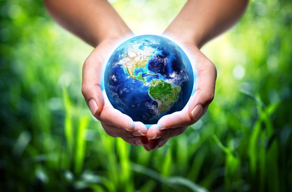 «Экологической культуре — Да!»